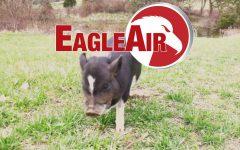 EagleAir TV, April 7, 2021, Episode 9
